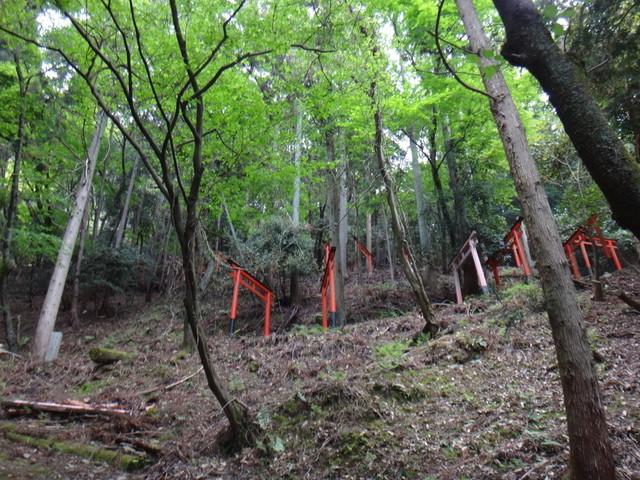 f:id:doroyamada:20190503200605j:image