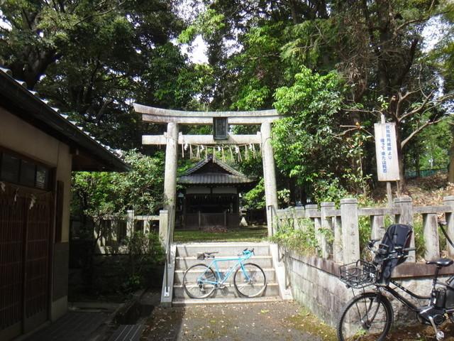f:id:doroyamada:20190503200635j:image