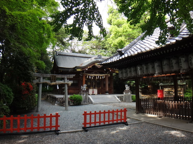 f:id:doroyamada:20190503200735j:image
