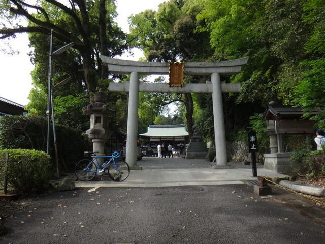 f:id:doroyamada:20190503200800j:image