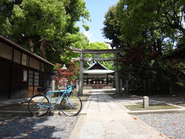 f:id:doroyamada:20190503214649j:image