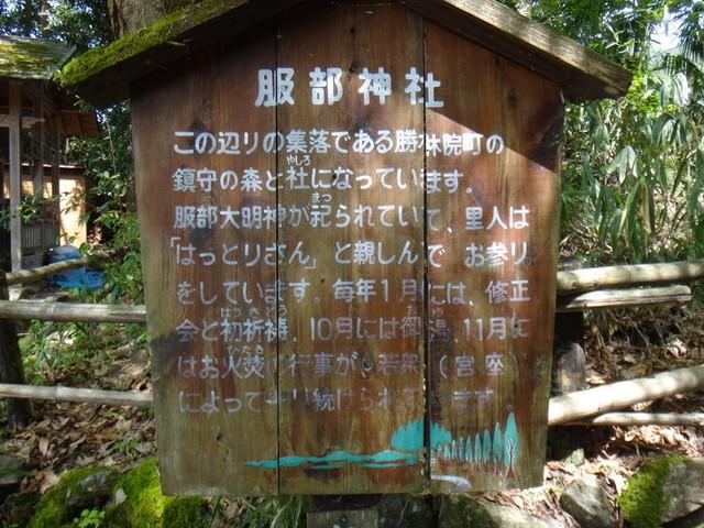 f:id:doroyamada:20190503214749j:image