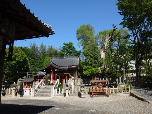f:id:doroyamada:20190504195554j:image