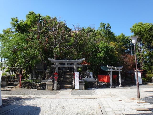 f:id:doroyamada:20190504195614j:image