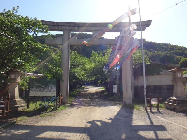 f:id:doroyamada:20190504195655j:image