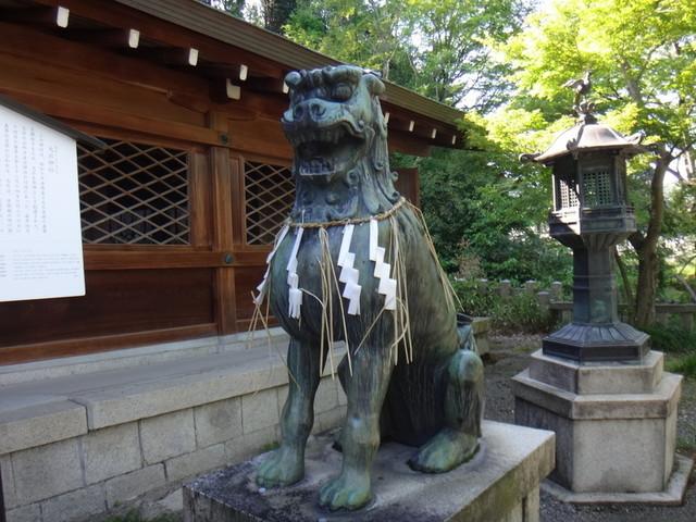 f:id:doroyamada:20190504195705j:image