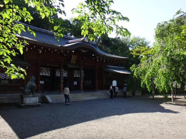 f:id:doroyamada:20190504195720j:image