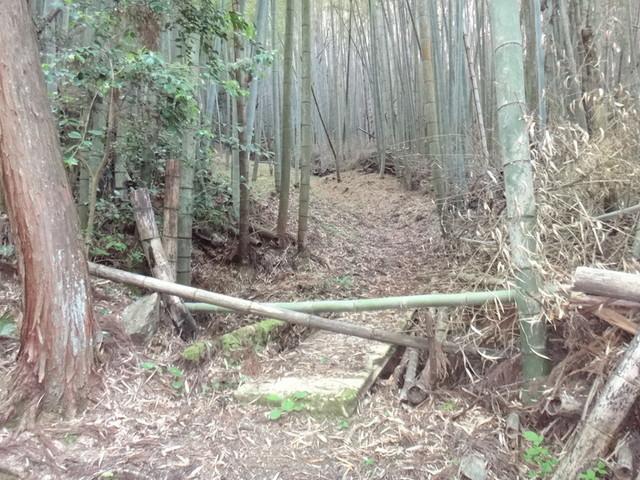 f:id:doroyamada:20190504195733j:image