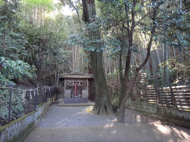 f:id:doroyamada:20190504195752j:image