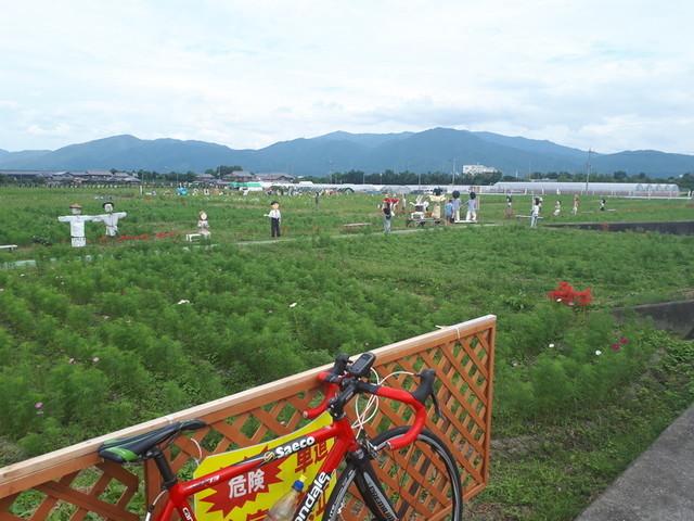 f:id:doroyamada:20190929225545j:image