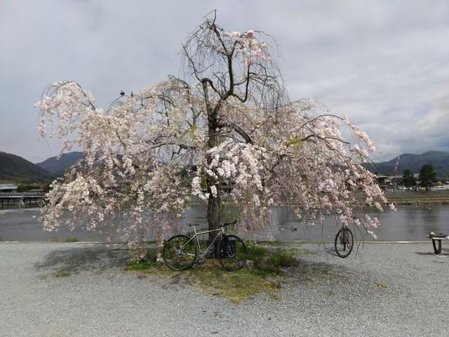 f:id:doroyamada:20200502205929j:image