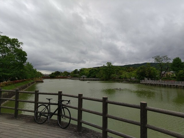 f:id:doroyamada:20200510222908j:image