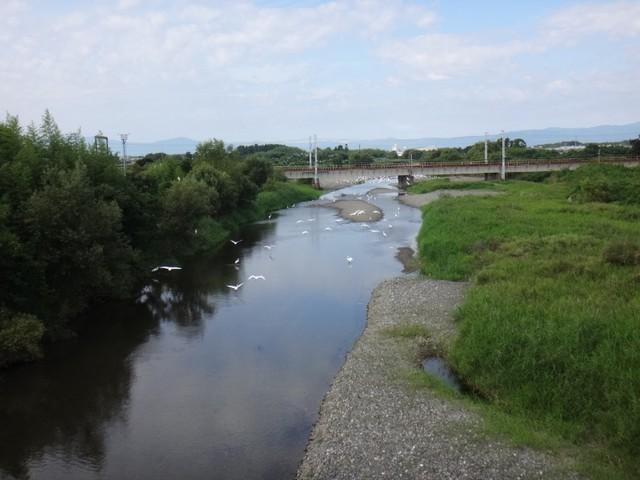f:id:doroyamada:20200928191107j:image