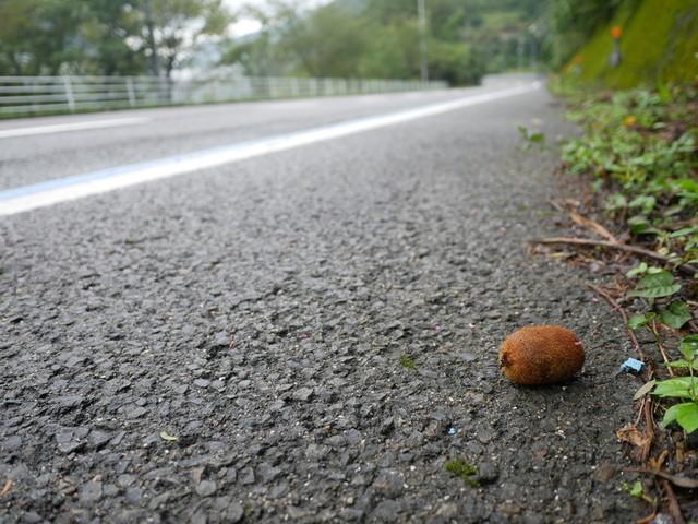 f:id:doroyamada:20201014210210j:image