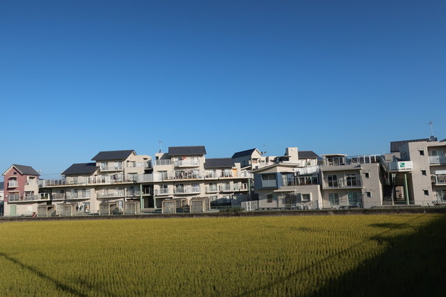 f:id:doroyamada:20201123090916j:image