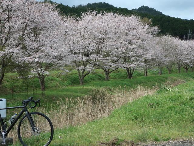 f:id:doroyamada:20210404223148j:image