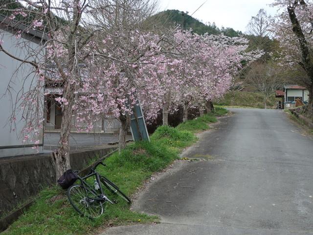 f:id:doroyamada:20210404223159j:image
