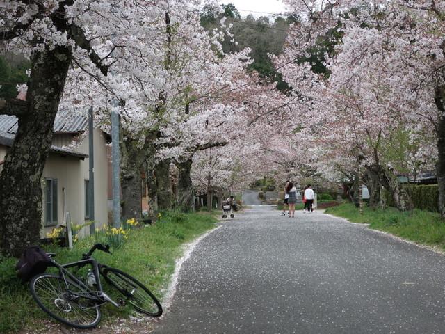 f:id:doroyamada:20210404223223j:image