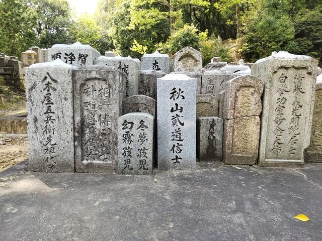 f:id:doroyamada:20210425213020j:image