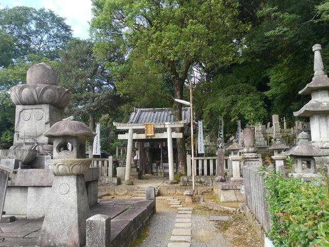 f:id:doroyamada:20210927194208j:image