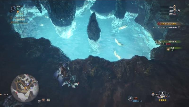 瘴気の谷エリア15で黄金魚を見つけたところ【モンスターハンター:ワールド】