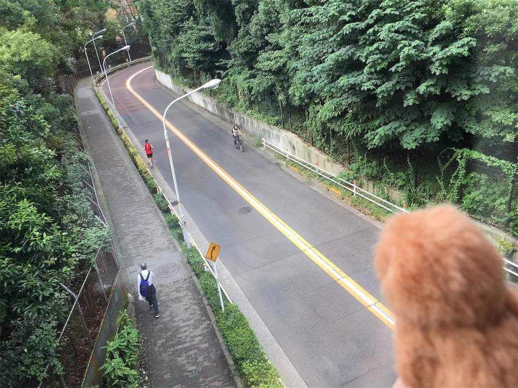 f:id:doubutsu_chin:20161215174243j:image