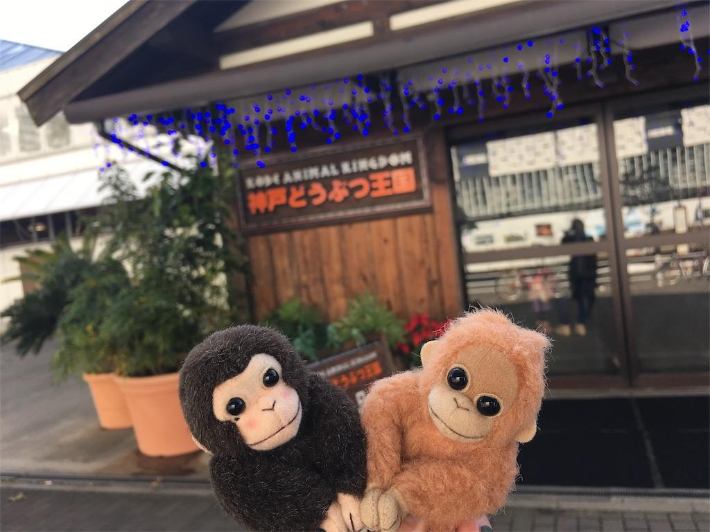 f:id:doubutsu_chin:20161217215230j:image