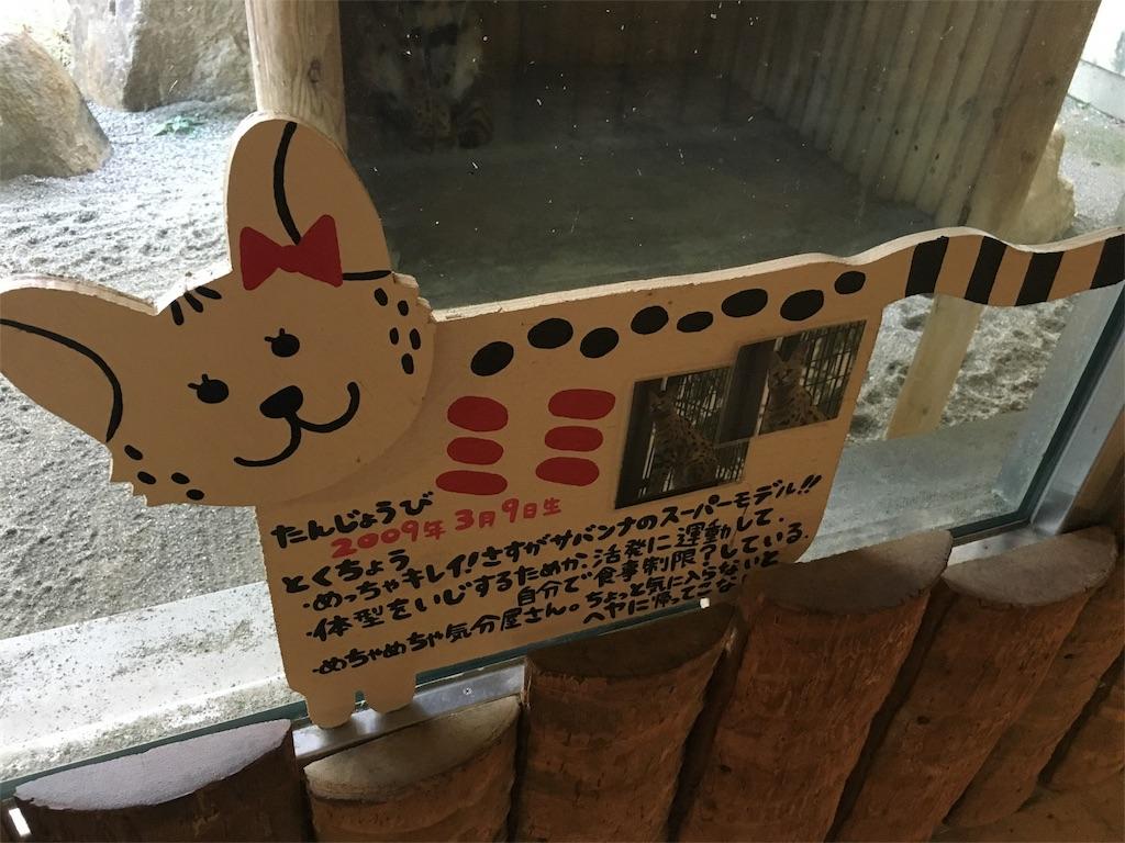 f:id:doubutsu_chin:20161225143531j:image
