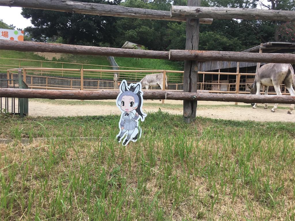 f:id:doubutsu_chin:20170928004325j:image