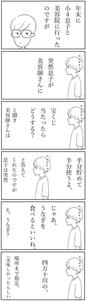 f:id:doudemoyoshiko:20170101064329j:plain