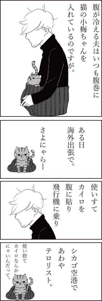 f:id:doudemoyoshiko:20170623061553j:plain