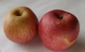 [果物][りんご]りんご