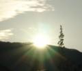 [太陽]初日の出