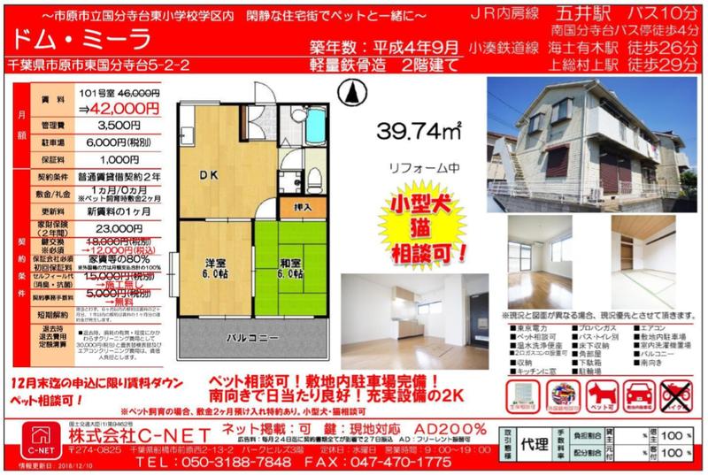 ドム・ミーラ 101号室 C-NET 20181214