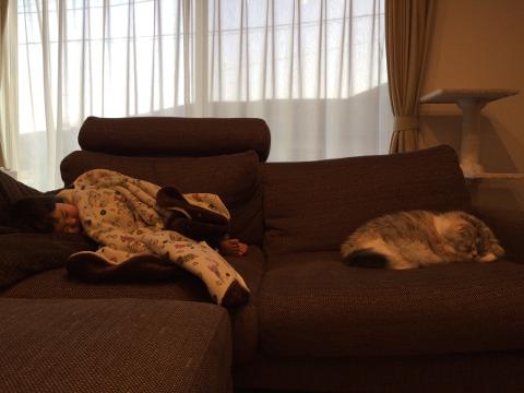 娘と猫のお昼寝
