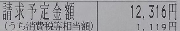 f:id:dr-yokohamaner:20200109124339j:plain