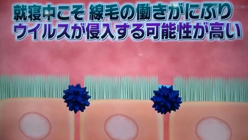 f:id:dr-yokohamaner:20200111182317j:plain