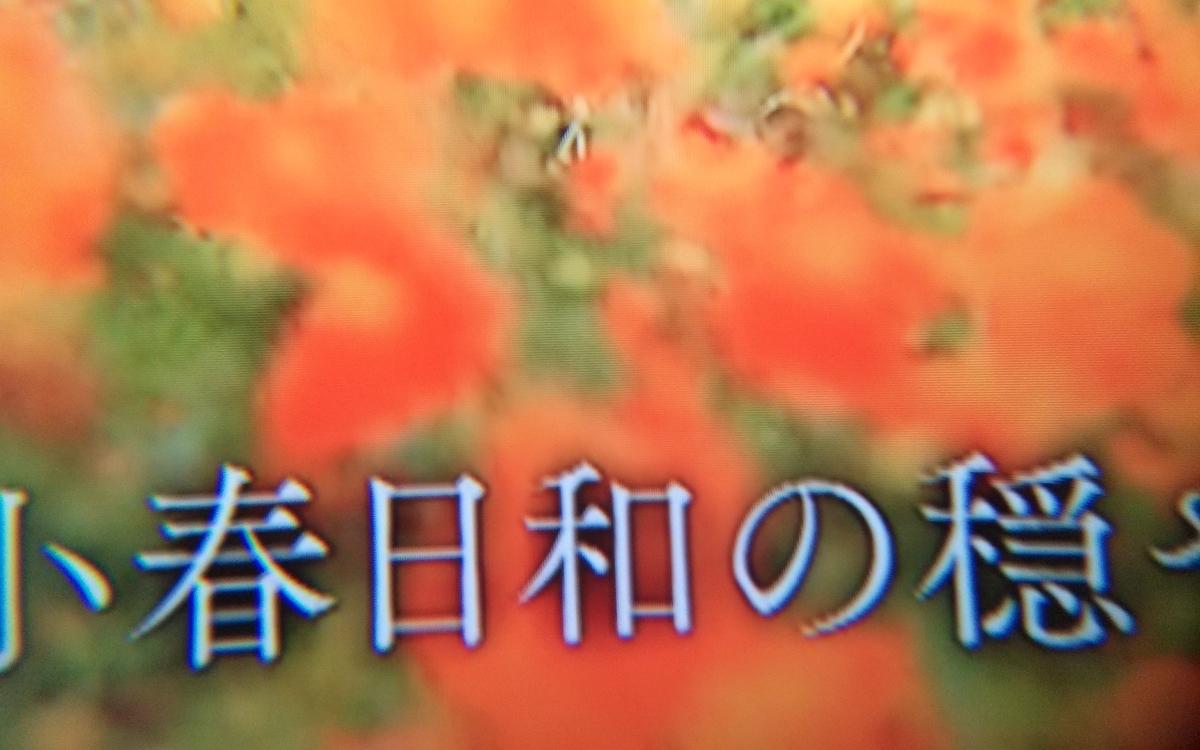 f:id:dr-yokohamaner:20200621174733j:plain