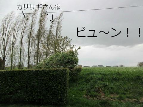 f:id:dr-yokohamaner:20210123075428j:plain