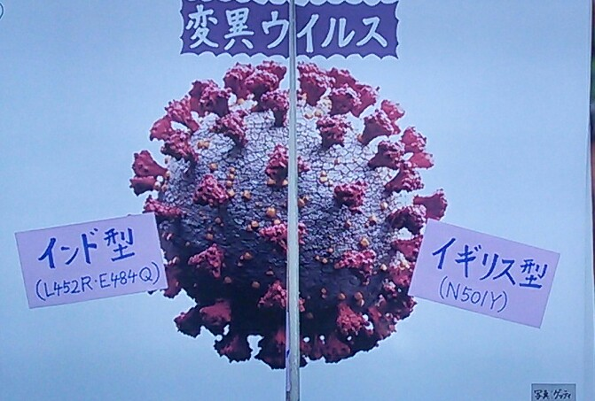 f:id:dr-yokohamaner:20210502082948j:plain