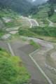 普段の「川」