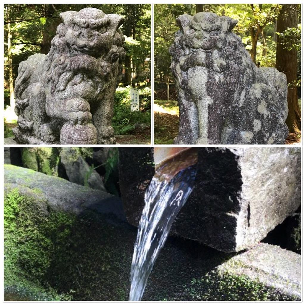 f:id:dragontone:20180702110151j:image