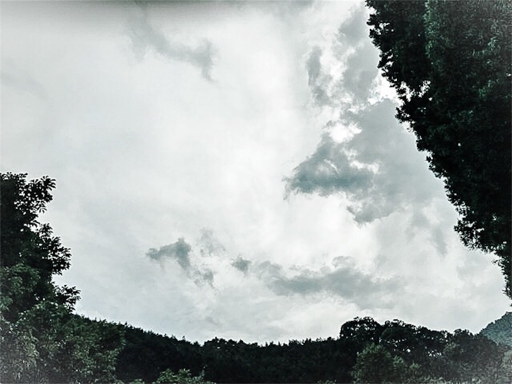 f:id:dragontone:20180803001439j:image