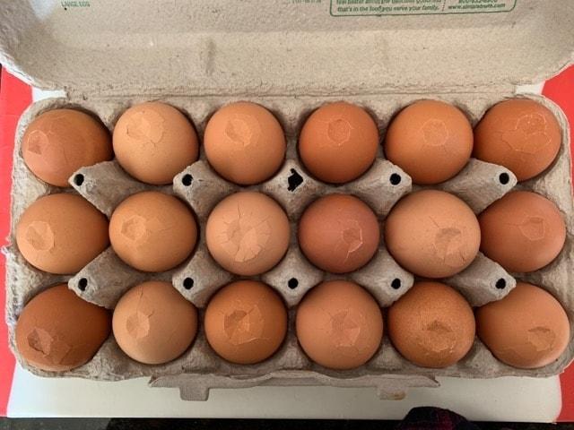 煮卵 半熟 草なぎ君 簡単 失敗しない レシピ