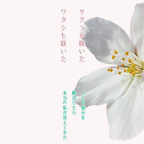 f:id:dramaticlife-japan:20170324155852j:plain