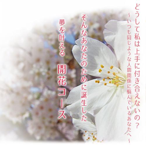f:id:dramaticlife-japan:20170324174332j:plain