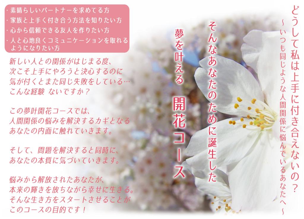 f:id:dramaticlife-japan:20170329113248j:plain