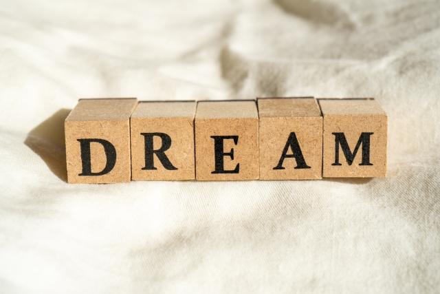 f:id:dream_maker:20210313002957j:plain