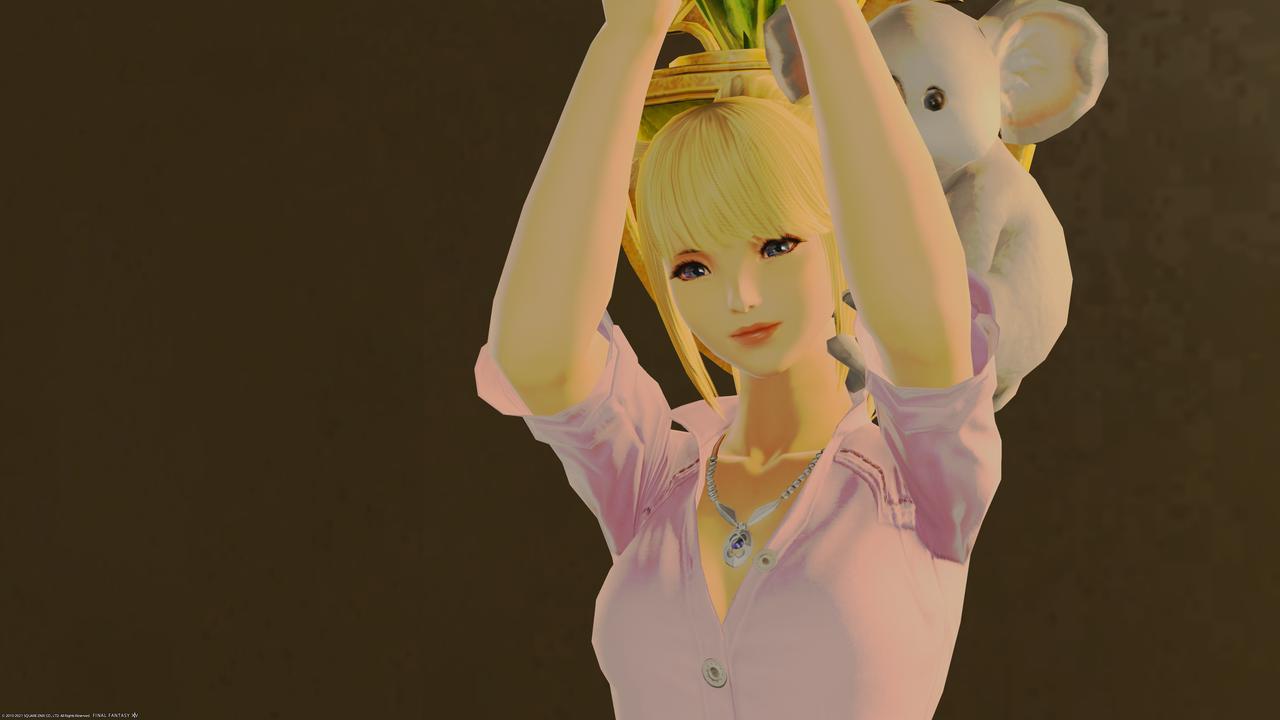 f:id:dream_moon:20210629115615p:plain