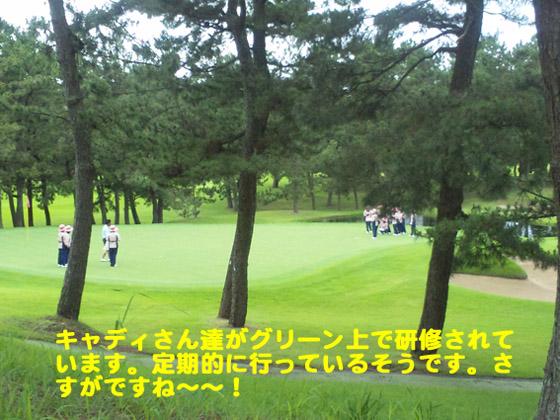 https://cdn-ak.f.st-hatena.com/images/fotolife/d/dreammiminabe53/20010101/20010101011340.jpg